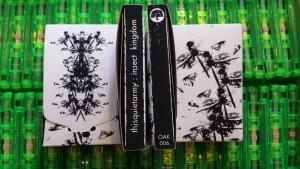 thisquietarmy - Covers 2