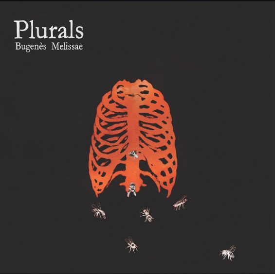 Plurals_Front_Cover
