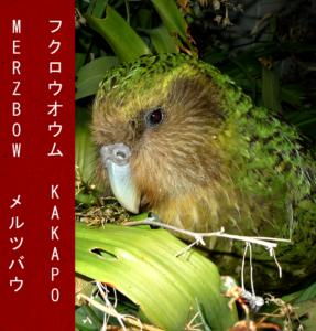 Merzbow Kakapo front